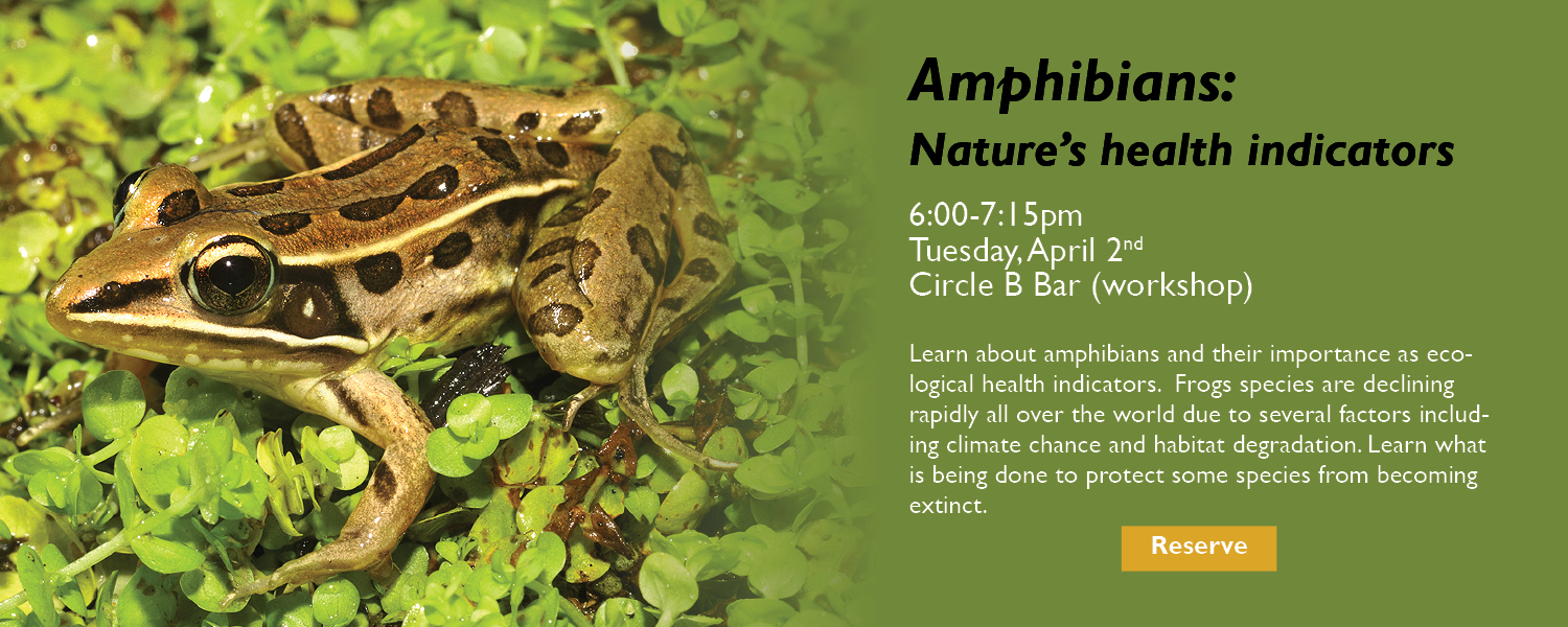 Amphibians: Nature's Health Indicators